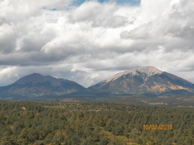 21325 Spirit Mountain Drive, Aguilar, CO 81020 (MLS #18-1138) :: Sarah Manshel of Southern Colorado Realty