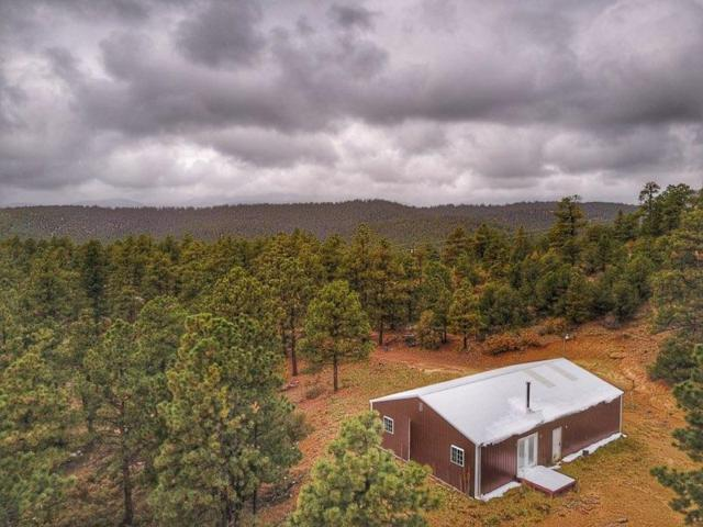16260 Rattlesnake Road, Weston, CO 81091 (MLS #18-1163) :: Big Frontier Group of Southern Colorado Realty