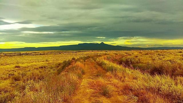 18990 Sunrise Trail Rd, Trinidad, CO 81082 (MLS #18-1203) :: Sarah Manshel of Southern Colorado Realty