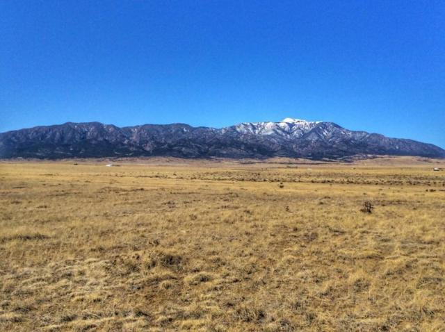 Lot 113 Colorado Buffalo Ranch, Walsenburg, CO 81089 (MLS #18-1236) :: Big Frontier Group of Bachman & Associates