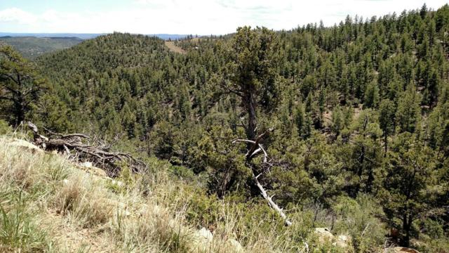 Timber Ridge Tracts 30, 31, Weston, CO 81091 (MLS #18-1266) :: Big Frontier Group of Southern Colorado Realty