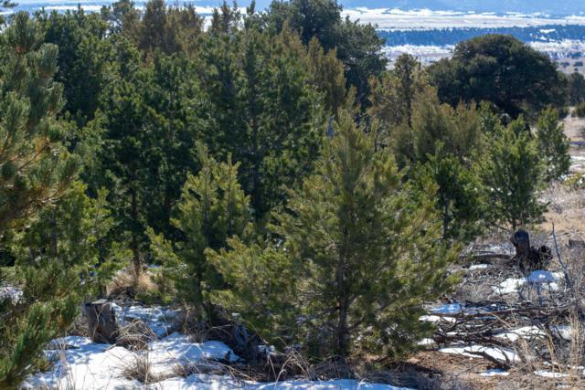 Lot 133 Navajo Ranch Estates, Walsenburg, CO 81089 (MLS #18-1281) :: Big Frontier Group of Southern Colorado Realty