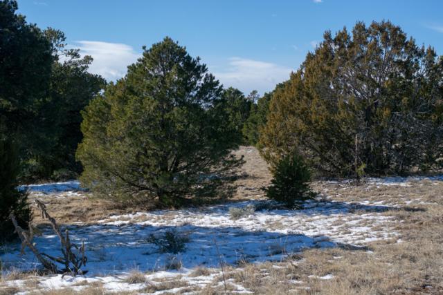 Lot 132 Navajo Ranch Estates, Walsenburg, CO 81089 (MLS #18-1282) :: Big Frontier Group of Southern Colorado Realty