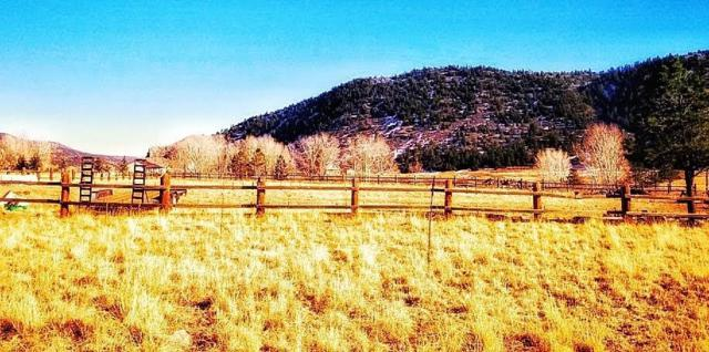 Stonewall Meadows, Stonewall, CO 81091 (MLS #18-1320) :: Big Frontier Group of Southern Colorado Realty