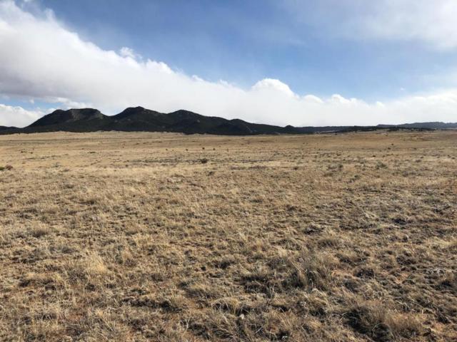 257 Black Hills #1, Walsenburg, CO 81089 (MLS #18-139) :: Sarah Manshel of Southern Colorado Realty