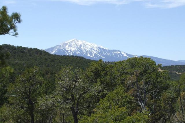 TBD Spanish Peaks Drive #25, Walsenburg, CO 81089 (MLS #18-146) :: Sarah Manshel of Southern Colorado Realty