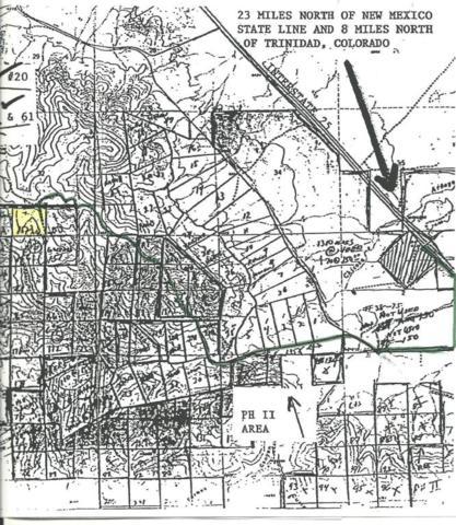 #152 Ponderosa Hills, Trinidad, CO 81082 (MLS #18-167) :: Sarah Manshel of Southern Colorado Realty