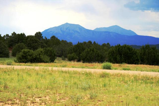 Silver Spurs Ranch Lot 82, Walsenburg, CO 81089 (MLS #18-180) :: Sarah Manshel of Southern Colorado Realty