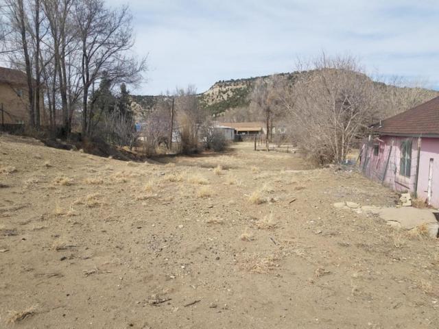 1039 Robinson Ave, Trinidad, CO 81082 (MLS #18-195) :: Sarah Manshel of Southern Colorado Realty