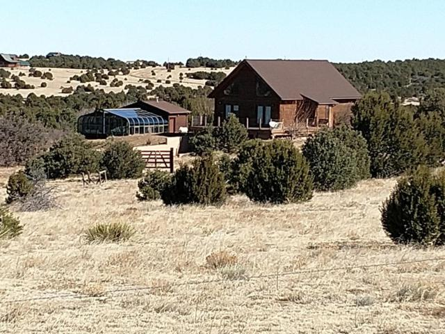 500 Leather Drive, Walsenburg, CO 81089 (MLS #18-215) :: Sarah Manshel of Southern Colorado Realty