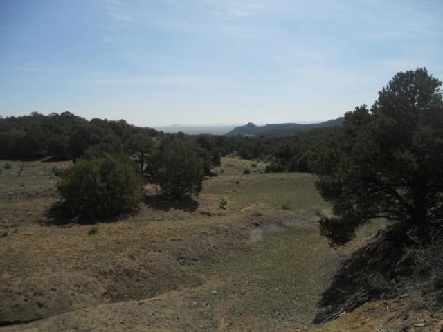 Upper Spur Rd #88, Aguilar, CO 81020 (MLS #18-230) :: Sarah Manshel of Southern Colorado Realty
