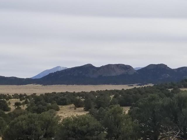 Lot 16 Badito Hills, Walsenburg, CO 81089 (MLS #18-233) :: Sarah Manshel of Southern Colorado Realty