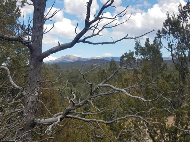 19 Rimrock Canyon Drive, Trinidad, CO 81082 (MLS #18-262) :: Sarah Manshel of Southern Colorado Realty