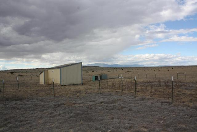Neibuhr Lane Lots 157 &191, Walsenburg, CO 81089 (MLS #18-29) :: Sarah Manshel of Southern Colorado Realty