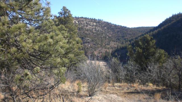 Big Pine Ridge Tract 62, Weston, CO 81091 (MLS #18-303) :: Sarah Manshel of Southern Colorado Realty
