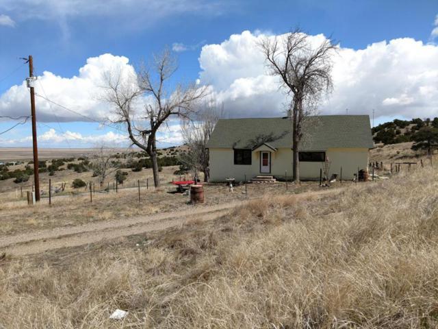 603 E Elder St, Walsenburg, CO 81089 (MLS #18-377) :: Sarah Manshel of Southern Colorado Realty