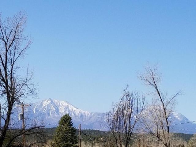303 Pennsylvania Ave, Walsenburg, CO 81089 (MLS #18-418) :: Sarah Manshel of Southern Colorado Realty