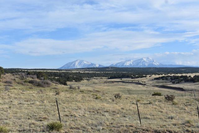 279 Black Hills #2, Walsenburg, CO 81089 (MLS #18-436) :: Sarah Manshel of Southern Colorado Realty