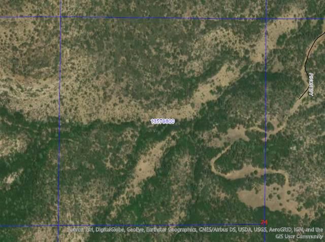 Rancho Verde #68, Trinidad, CO 77049 (MLS #18-452) :: Bachman & Associates