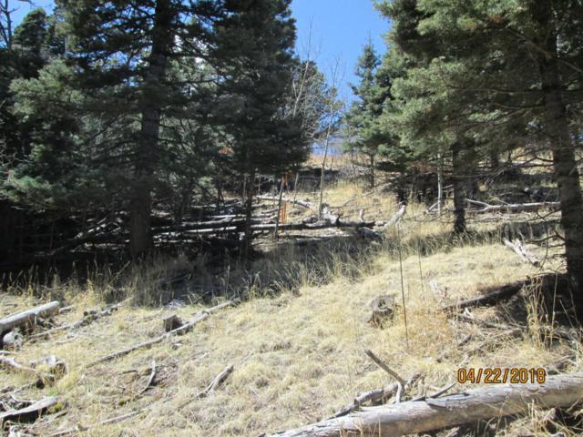 Spanish Peaks Ranch Filing 2 Lot #52, Gulnare, CO 81020 (MLS #18-481) :: Sarah Manshel of Southern Colorado Realty