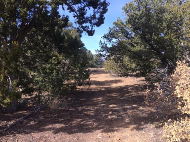 26601 Madrid Canyon Rd, Trinidad, CO 81082 (MLS #18-49) :: Sarah Manshel of Southern Colorado Realty