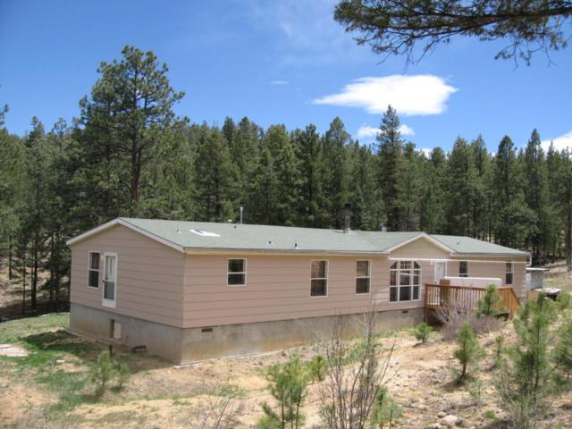 11210 Chinook Drive, Trinidad, CO 81082 (MLS #18-491) :: Sarah Manshel of Southern Colorado Realty