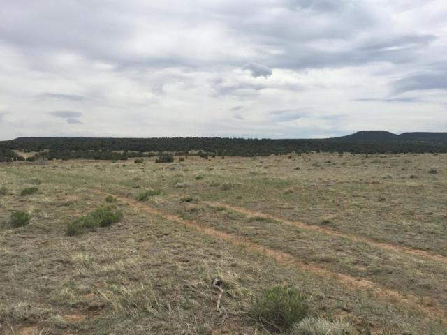 River Ridge Ranch Lot 42, Walsenburg, CO 81089 (MLS #18-493) :: Sarah Manshel of Southern Colorado Realty