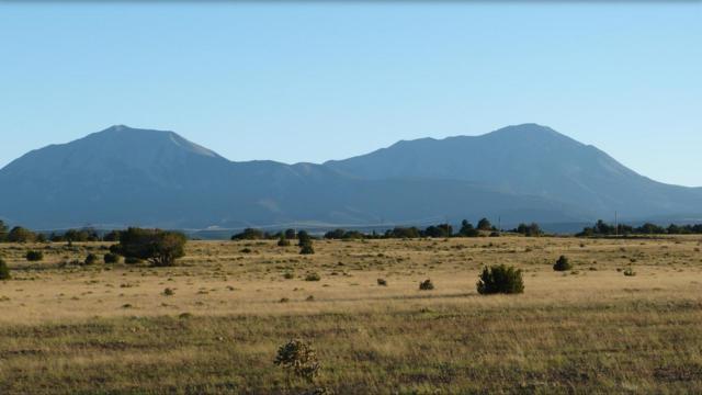Rio Cucharas Phase 1 Lot 121, Walsenburg, CO 81089 (MLS #18-52) :: Sarah Manshel of Southern Colorado Realty