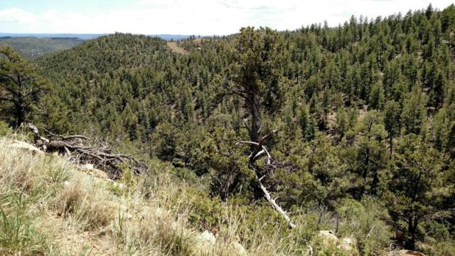 Timber Ridge Filing Tract 30, Weston, CO 81091 (MLS #18-520) :: Sarah Manshel of Southern Colorado Realty