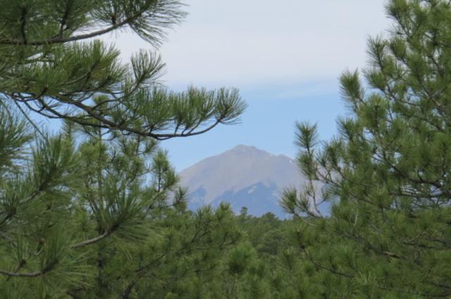 Hidden Canyon Ranch Parcel B, Aguilar, CO  (MLS #18-534) :: Sarah Manshel of Southern Colorado Realty