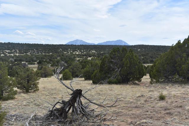 Twin Lake Ranches 87 & 119, Walsenburg, CO 81089 (MLS #18-537) :: Sarah Manshel of Southern Colorado Realty