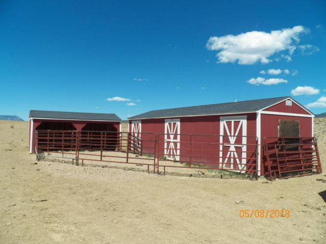 TBD Dog Springs Road, Walsenburg, CO  (MLS #18-554) :: Sarah Manshel of Southern Colorado Realty