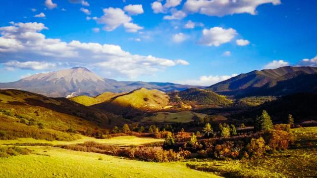 1785 County Road 421, LaVeta, CO 81055 (MLS #18-561) :: Sarah Manshel of Southern Colorado Realty