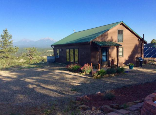 24115 Wildcat Rd, Aguilar, CO 81020 (MLS #18-585) :: Sarah Manshel of Southern Colorado Realty