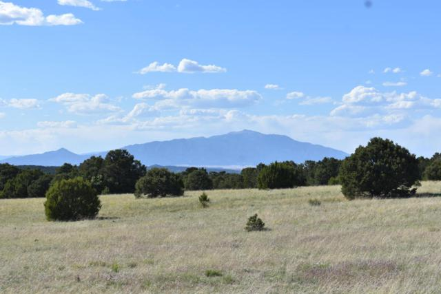 Silver Spurs Ranch #71, Walsenburg, CO 81089 (MLS #18-600) :: Sarah Manshel of Southern Colorado Realty