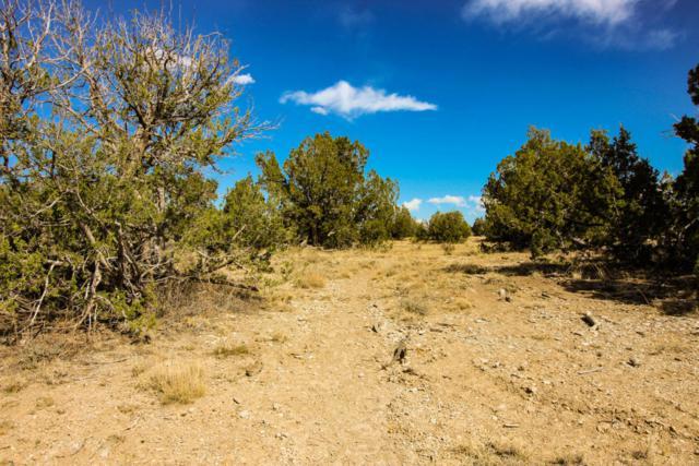 Las Animas Ranch 01-29-60, Trinidad, CO 81082 (MLS #18-605) :: Sarah Manshel of Southern Colorado Realty