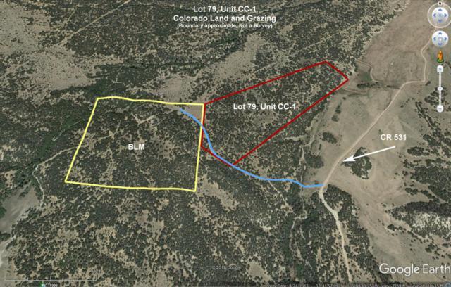 Lot 79 Colorado Land And Grazing Lot 79 Unit Cc, Gardner, CO 81040 (MLS #18-610) :: Sarah Manshel of Southern Colorado Realty