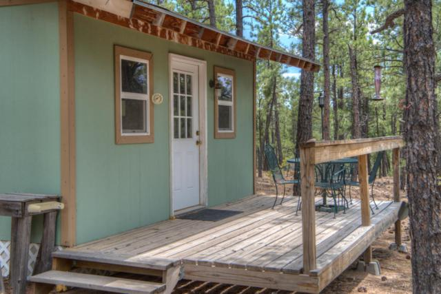 13 Pine Valley, Weston, CO 81091 (MLS #18-616) :: Sarah Manshel of Southern Colorado Realty