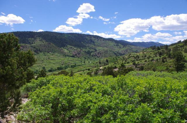 Lot 28 Tres Valles, LaVeta, CO 81055 (MLS #18-619) :: Sarah Manshel of Southern Colorado Realty