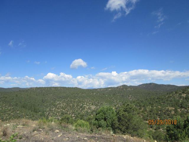 Prospect Canyon Ranch C-5, Trinidad, CO 81082 (MLS #18-656) :: Sarah Manshel of Southern Colorado Realty