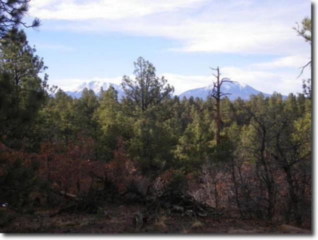 Smyths Trek Outlook 4, Weston, CO 81091 (MLS #18-657) :: Sarah Manshel of Southern Colorado Realty