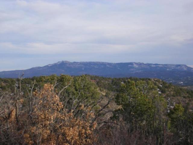 Primero Ranch #25, Segundo, CO 81082 (MLS #18-661) :: Sarah Manshel of Southern Colorado Realty