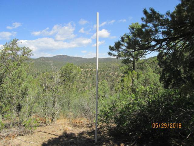 Prospect Canyon Ranch Lot C-6, Trinidad, CO 81082 (MLS #18-664) :: Sarah Manshel of Southern Colorado Realty
