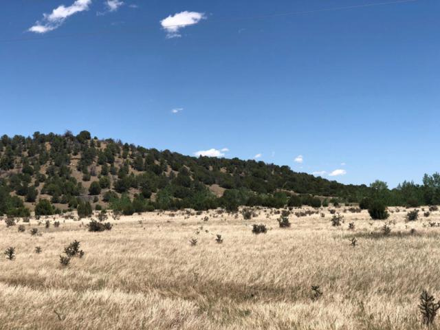 12338 Kunzite Rd Lot  34, Trinidad, CO 81082 (MLS #18-681) :: Sarah Manshel of Southern Colorado Realty