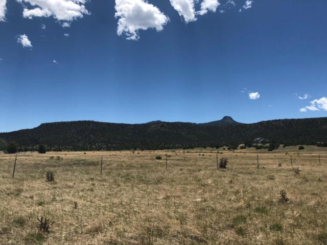 000 Kunzite Rd 34-35, Trinidad, CO 81082 (MLS #18-684) :: Sarah Manshel of Southern Colorado Realty