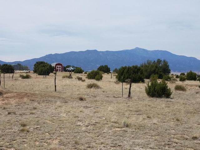 n/a County Road 521.3, Walsenburg, CO 81089 (MLS #18-695) :: Sarah Manshel of Southern Colorado Realty