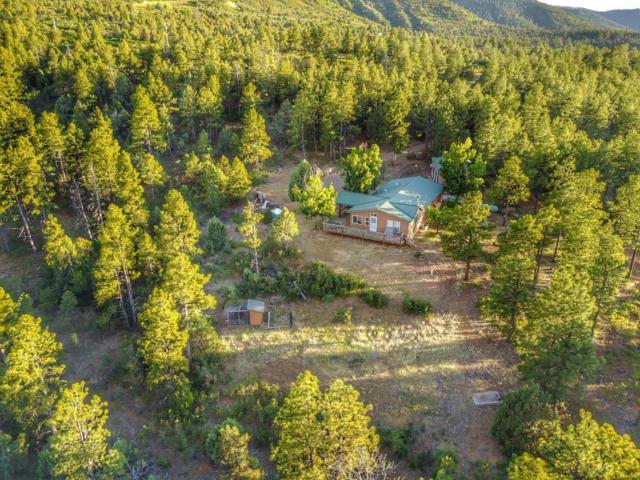 7427 Four Mile Canyon Rd, Walsenburg, CO 81089 (MLS #18-716) :: Sarah Manshel of Southern Colorado Realty