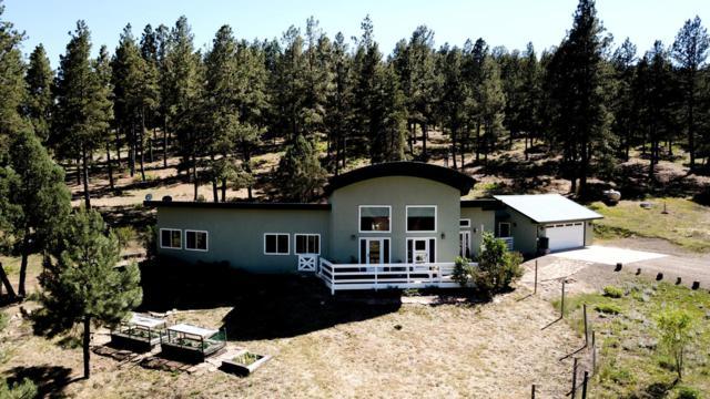 33250 Gallinas, Trinidad, CO 81082 (MLS #18-771) :: Sarah Manshel of Southern Colorado Realty