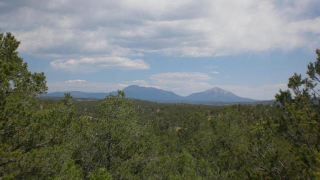 Rancho La Garita Filing 9 Lot 1041, Weston, CO 81091 (MLS #18-797) :: Sarah Manshel of Southern Colorado Realty