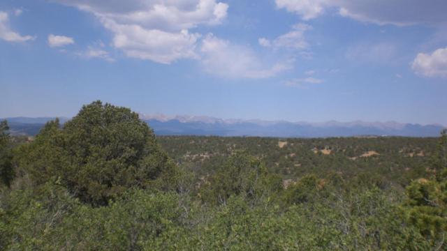 Rancho La Garita Filing 9 Lot 1048, Weston, CO 81091 (MLS #18-798) :: Sarah Manshel of Southern Colorado Realty